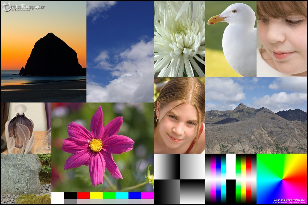 Virtual Photographer滤镜_柔化、棕褐色调、老照片