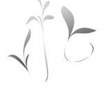 多种简单植物形状