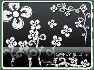 漂亮的小清新鲜花图案PS笔刷素材